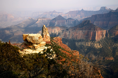 kaibab-plateau-near-the-north-rim-of-the-grand-canyon-in-arizona